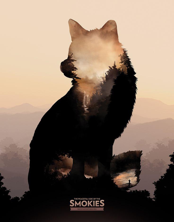 Go Wild! Gelungene Poster-Serie für Smoky Mountain Tourism  Ruhe, Wildnis, Natur, Entspannung – das ist es, was diese Motive uns mitteilen. Kreiert wurden sie vonShayne Ivy ausKnoxville, der hier zusammen…