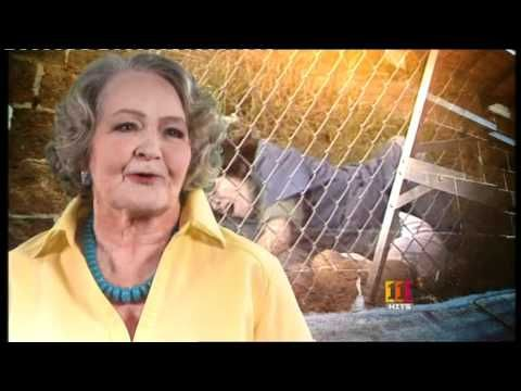 111 HITS - LIZZIE BIRDSWORTH RIP Sheila Florence A very spot for dear Lizzie