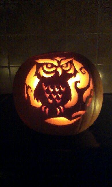 Carved pumpkin owl..