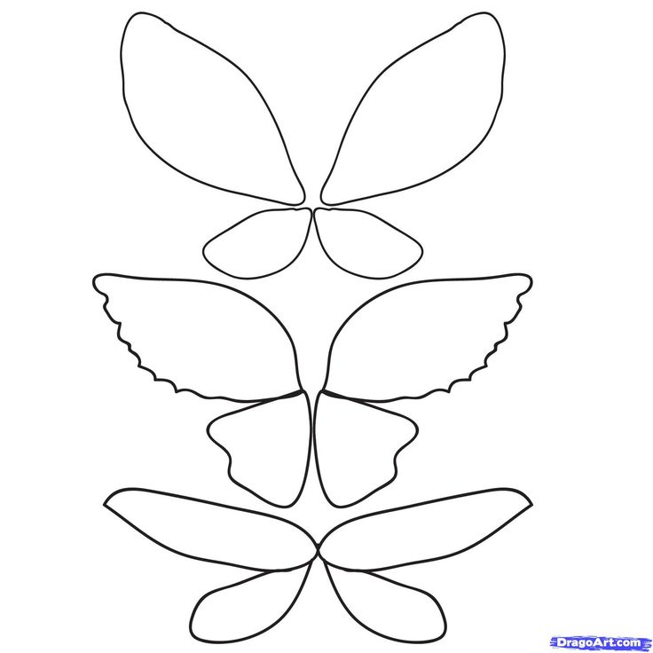 Best 25+ Fairy wings drawing ideas on Pinterest | Fairy ...