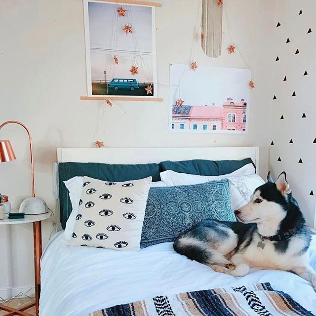dog love bedroom inspo bedroom ideas room goals bed rooms dorm ideas