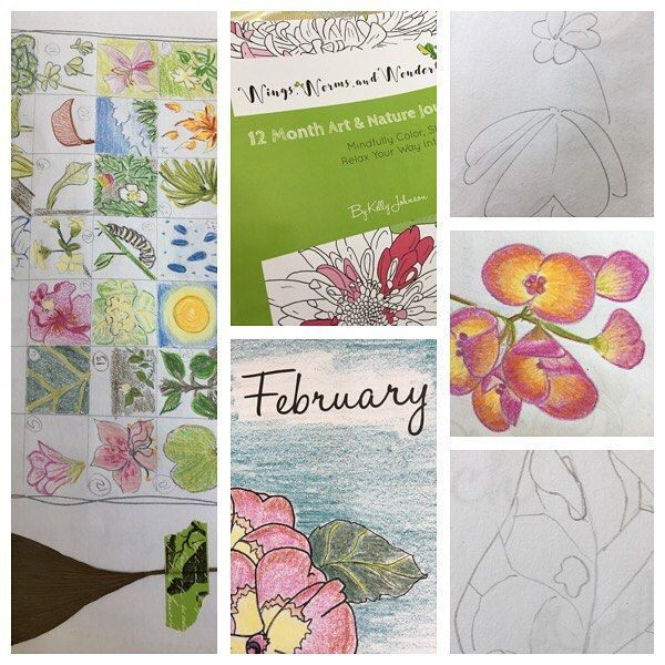 I completed the month of February in my #12monthartandnaturejournal ! It was so relaxing and not pressured & i feel such a sense of accomplishment! This probably sounds weird but even though it's my own book i too get overwhelmed with nature journaling too in life's busy schedules. So i wanted to create a journal format that inspires awesome creative nature connection with low pressure and ease. Each month has just 6 activity pages (3 guided 3 blank) that you can approach in any way you…