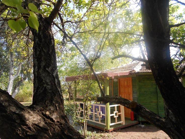 Çıralı Fire Pansiyon ..... #cirali #ciralihotel #ciralipension #ciralihostel #pension #hostel #lodge #ciralilodge #layover #urav #antalyahotels #antalyapension #antalyalodge #antalya  #mediterranean #chimera #ciraliapart #antalyaapart #bungalow