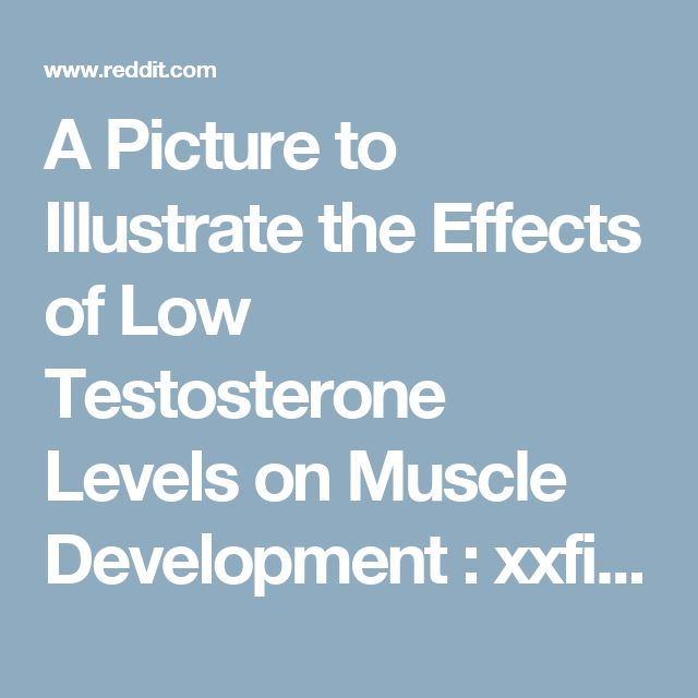 A Picture to Illustrate the Effects of Low Testosterone Levels on Muscle Development : xxfitness