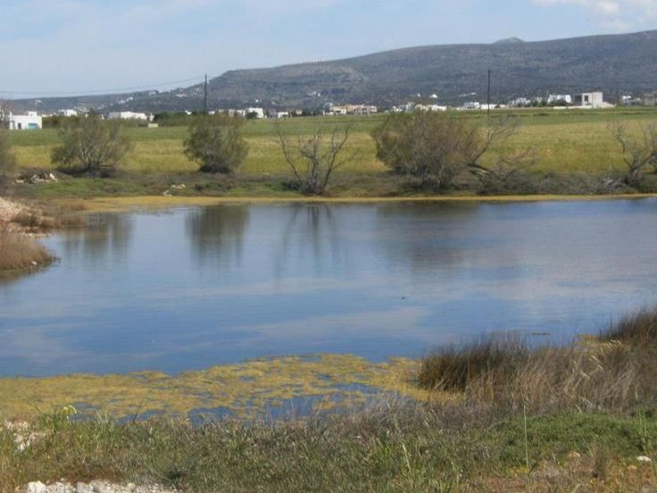 Footpath from Pounda to Alyki, Walking & Trekking Routes on Paros , #Paros, #Greece, #Nature