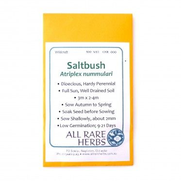 Saltbush Seeds by All Rare Herbs