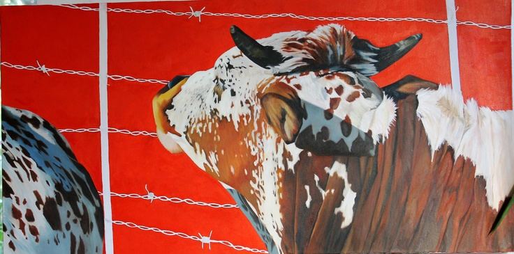 Nguni cattle, oil on canvas