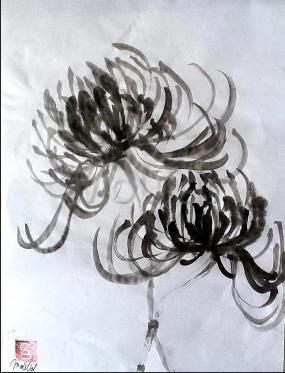 chrysanthème by Tchan