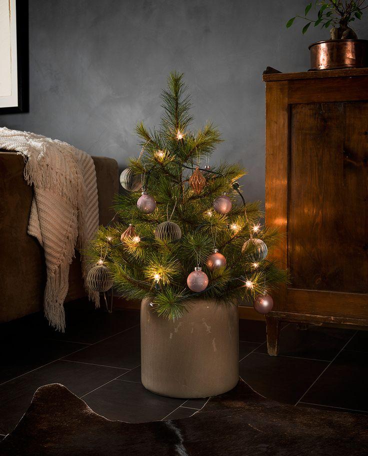 Sjarmerende juletrebelysning fra Konstsmide med 20 topplamper med klar pære med vridd tupp. Slyngen har grønn kabel.