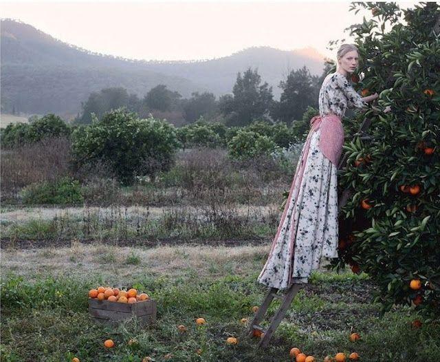 Pick Of The Crop (Vogue Australia October 2013 via TFS)