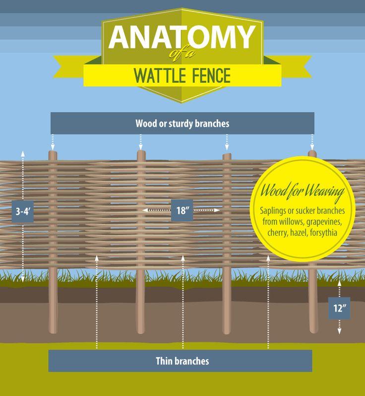 Wattle fences explained
