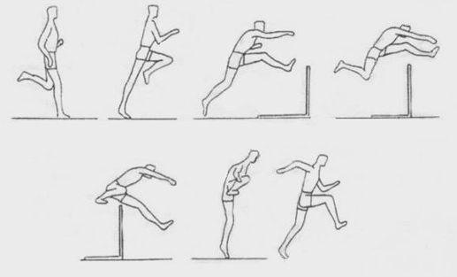 animacja fazy skoku - Szukaj w Google