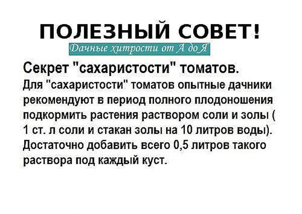 дачные хитрости. Обсуждение на LiveInternet - Российский Сервис Онлайн-Дневников