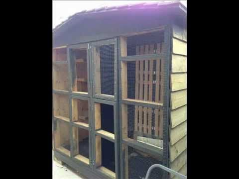 ▶ Pigeon Loft Design For Confined Spaces - YouTube