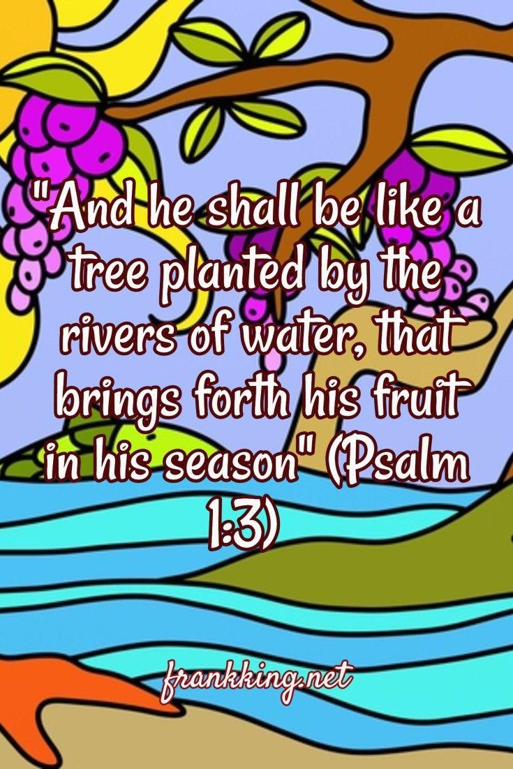 Résultats de recherche d'images pour «a cedar planted in water bible»