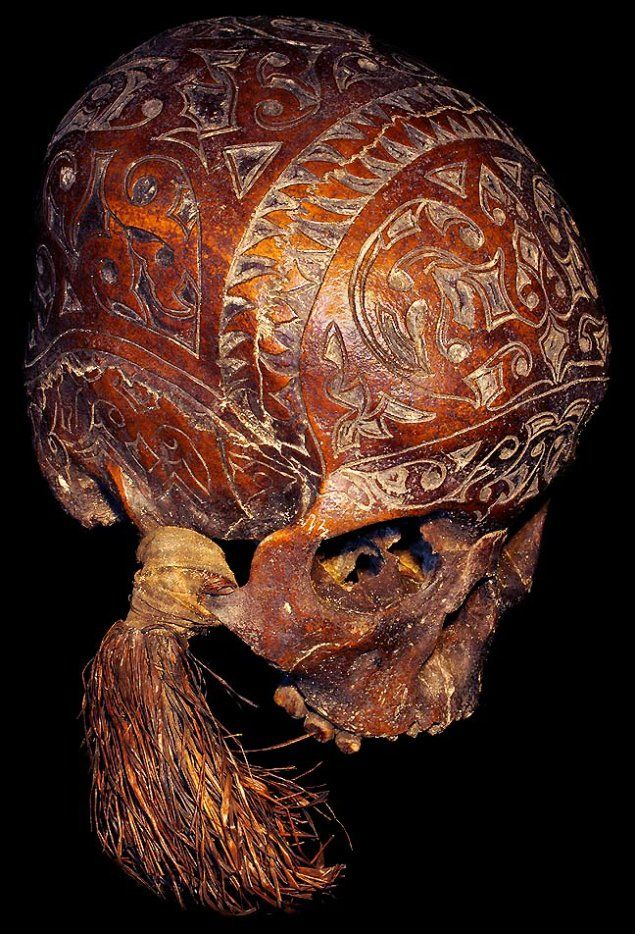 Trophee Humain Dayak - The Dayak are the indigenous people of Borneo.