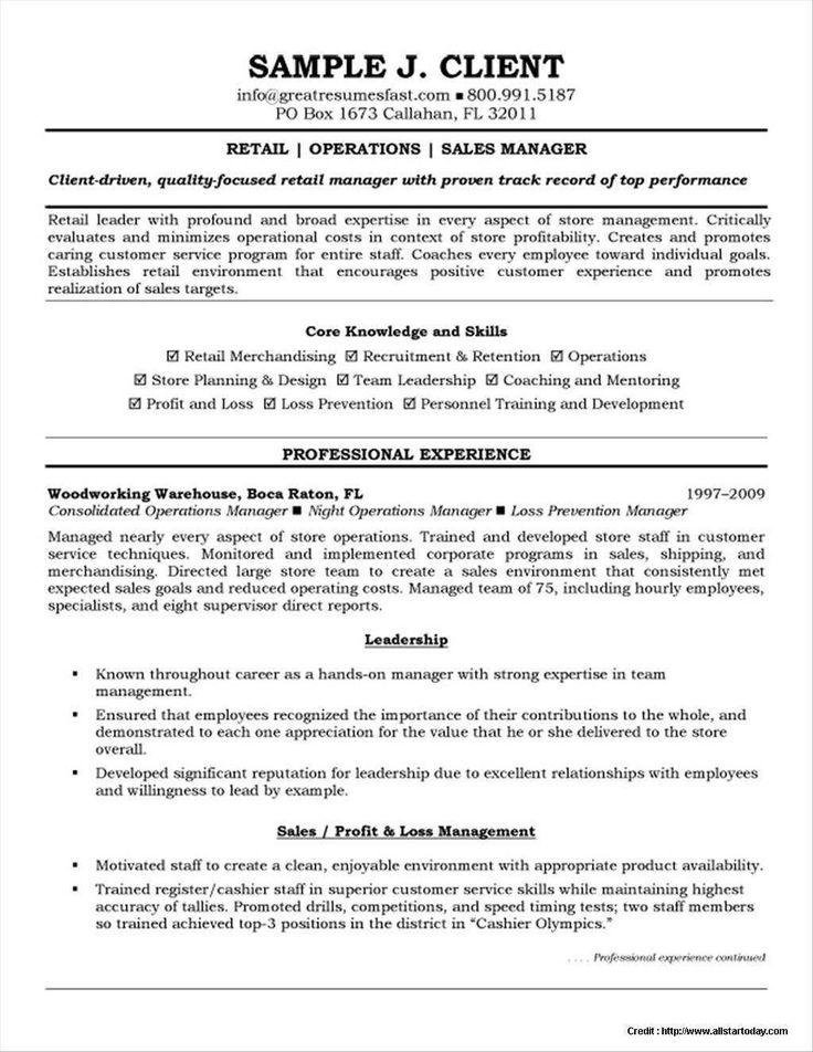 36+ Store manager resume objective Resume Examples