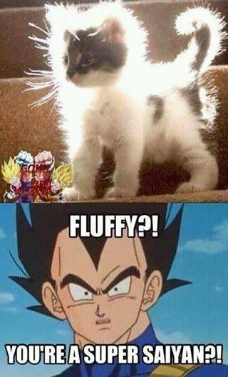 Fluffy super Saiyan DBZ MEMES dragon ball z memes