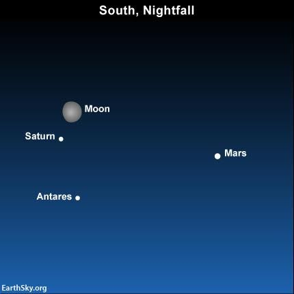 The moon swings close to the ringed planet Saturn on July 15. Read more.By late July, you might be able to see all five bright planets at once, briefly, after sunset.