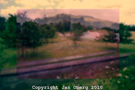 Sunset In Dawn 2010