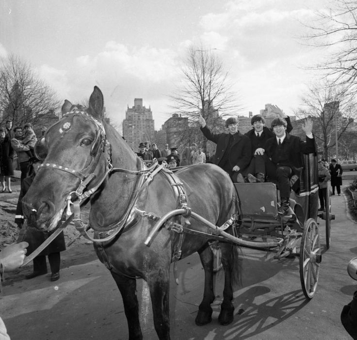 Baby you can drive my ... carriage! Paul, John and Ringo checked out Central Park for the very first time in style -- on a horse drawn carriage! George Harrison's trip to America got off to a bad start, however. The guitarist stayed at the hotel to nurse a sore throat.