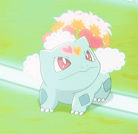 Shauna's Bulbasaur is SO CUTE!!!!! XD :D :) ^_^ ^.^ ♡