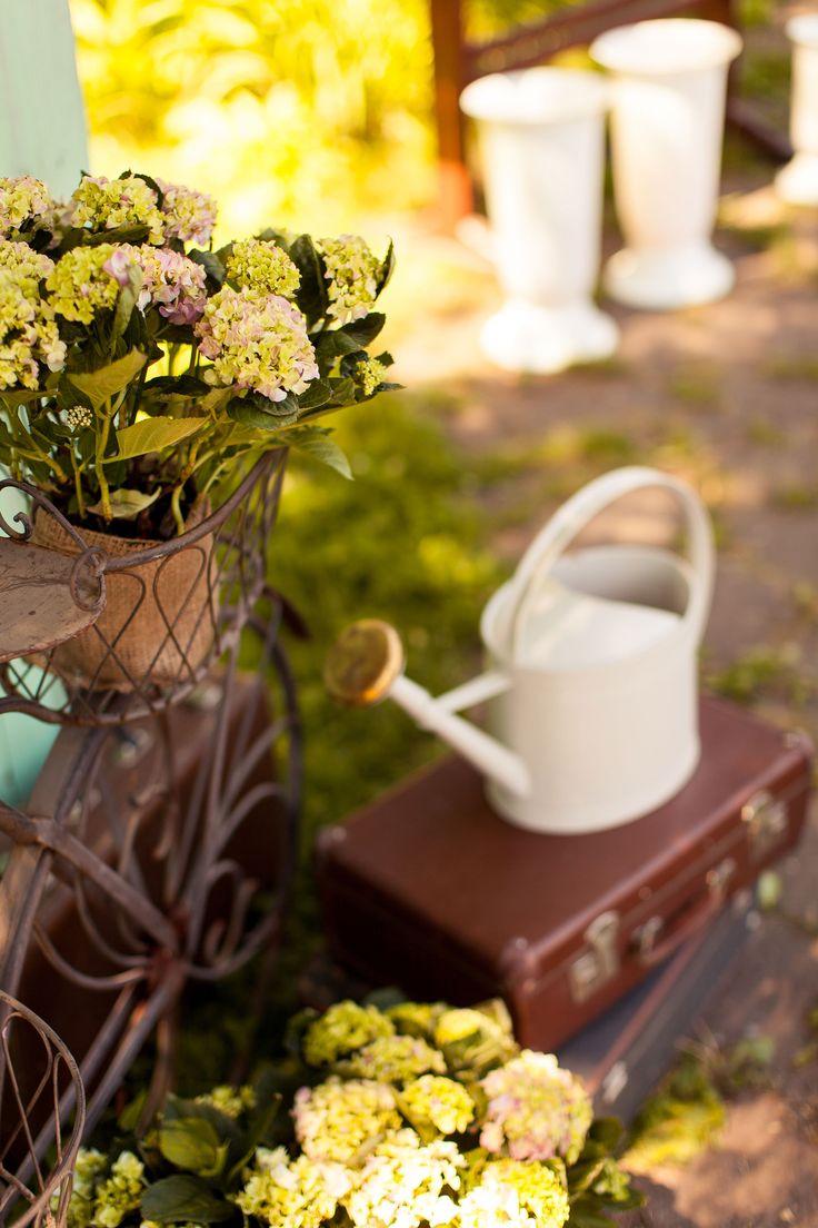 wedding photo, wedding decor, summer decor,  flowers carden, decor, цветы, чемодан, лейка, летняя свадьба, сад