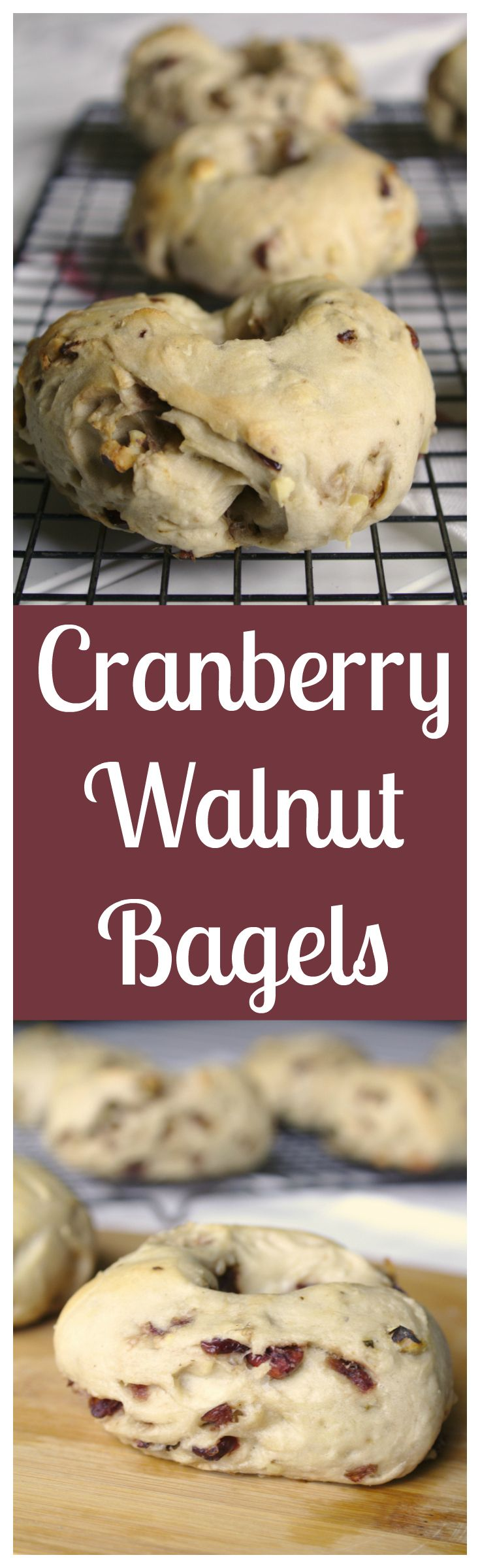 Cranberry Walnut Bagels - Wonderful homemade bagels filled with cranberries and chopped walnuts. Grab some cream cheese and dig in! #sponsored #OurCaringHands #SoftsoapTouch @target