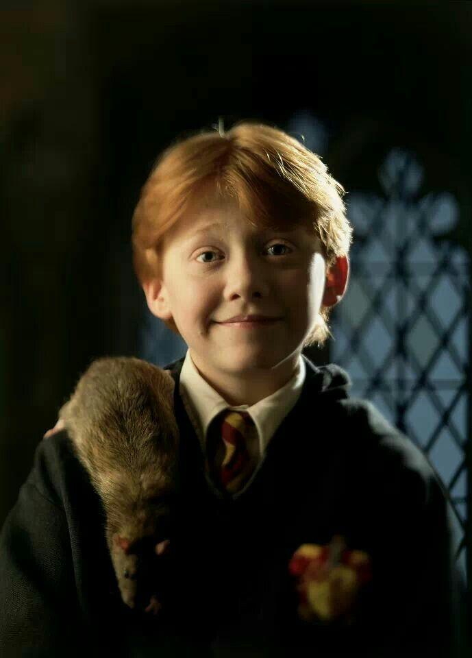 Harry Potter -Ron Weasley Ron Wemel