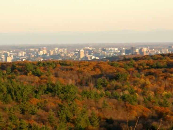 This 2k loop around King Mountain in Gatineau Park provides possibly the best view of Ottawa, Gatineau and the river valley below in the region.
