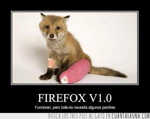 Firefox, el navegador más animal #firefox #salvaje #cute #zorro #animal