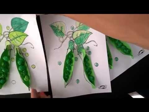 Peas in a pod - YouTube