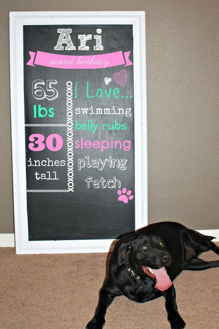dog birthday chalkboard. Blogger used pimonkey to add text to look like a chalkboard. How easy!