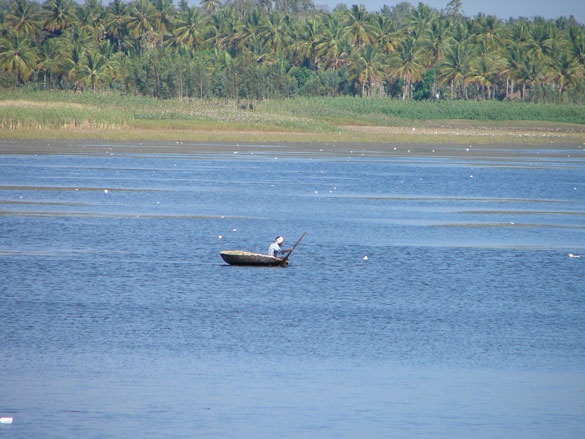 A freshwater lake on the road to Talakad.  #india #incredibleindia #travel