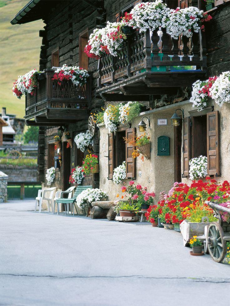 Le case di #Livigno in #estate si riempiono di #fiori e #colori!