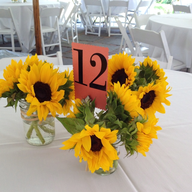 Wedding Flowers Lincoln: 35 Best Images About Sunflower City! On Pinterest