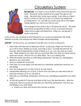 34 Best Respiratory System Images On Pinterest Respiratory System