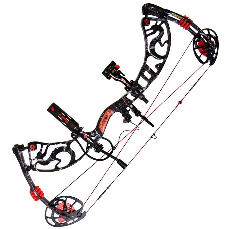 1 set compound bow 40-60lbs let off 80% archery pro bow hunting high accuracy long range bow(China (Mainland))
