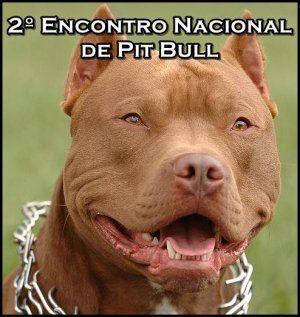 Criadores de pitbull promovem encontro em Feira