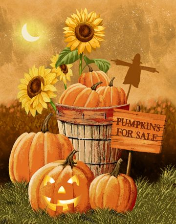 Pumpkins For Sale - I like the scarecrow silhouette