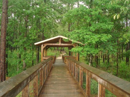 Falling Waters State Park - Chipley, Florida #floridastateparks
