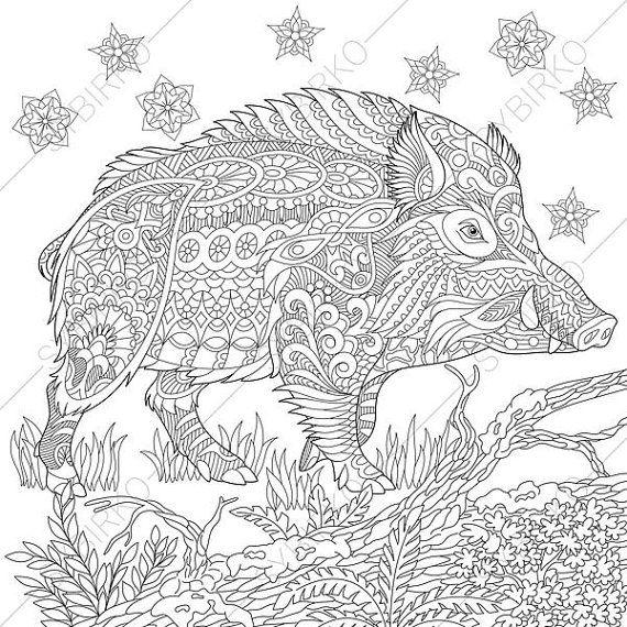 adult coloring pages pigs - adult coloring pages wild boar pig by