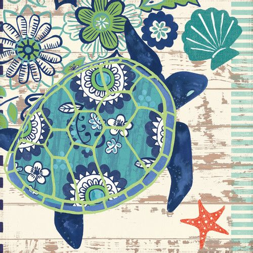 Found it at Wayfair - Oceania Sand Dollars by Jennifer Brinley Graphic Art on Wrapped Canvas