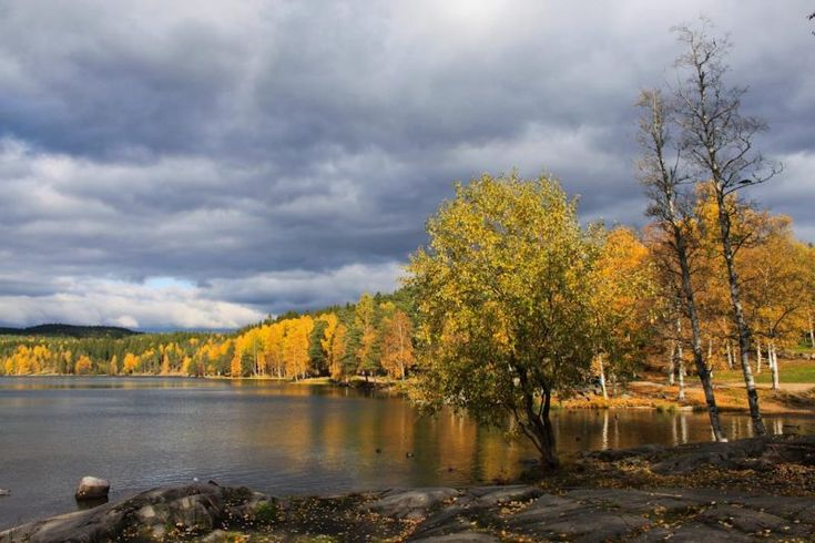 Four easy hikes in Oslo