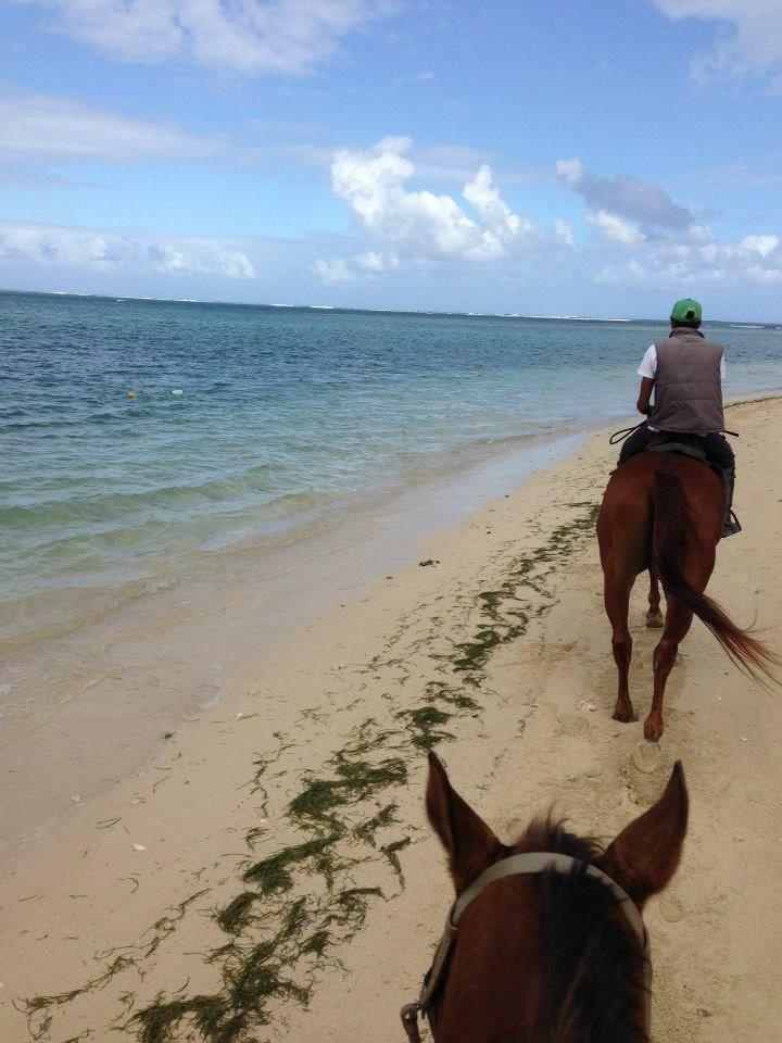 Horse-riding along the beautiful beach in Mauritius.