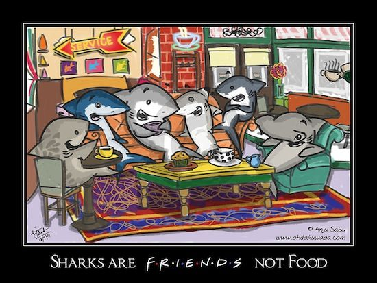 #Sharks are #friends not food