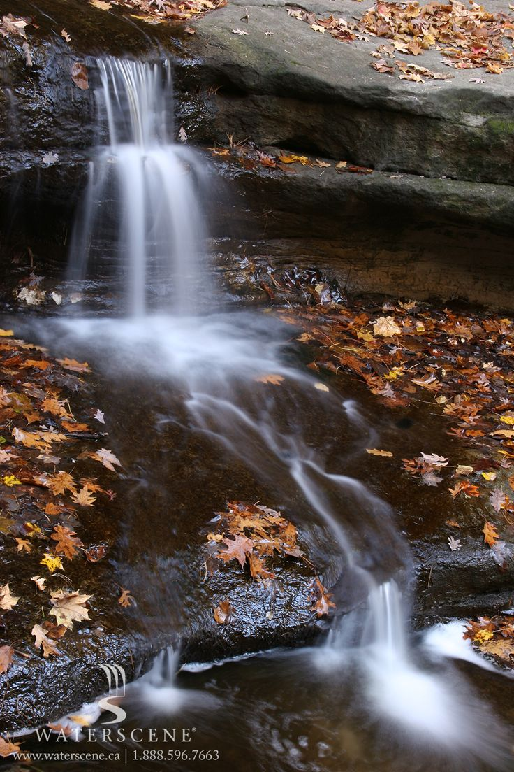 Despite the chill of fall, our water features continue to provide the warmth of beauty.