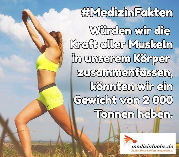Wow❗ Das entspricht etwa dem Gewicht von 400 #Elefanten 😳. #Körper #Kraft #Muskeln #MedizinFakten #Fakten #Gesundheit #medizinfuchs