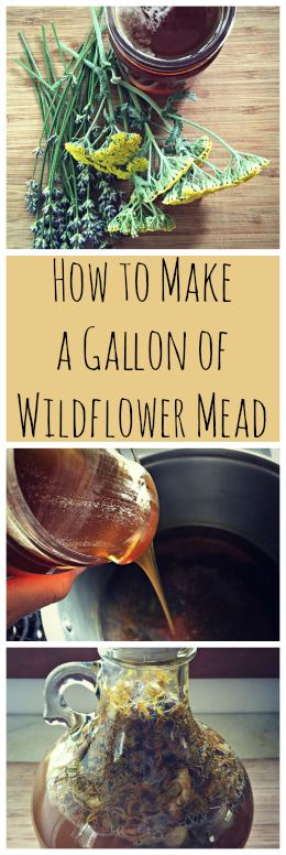 How to Make Wildflower Mead~ A one gallon mead recipe with flowers from your…