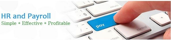 How Payroll Management Software helps in Small Business Area?